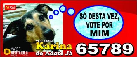 campanha12